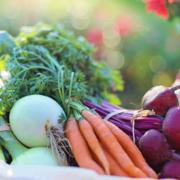 Zdravom i raznovrsnom ishranom možete obezbediti unos minerala i vitamina važnih za jak imunitet