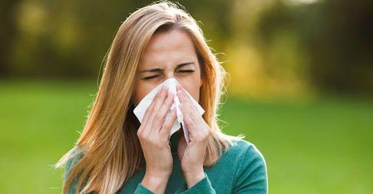 Alergija nastaje kada imunološki sistem preterano reaguje na određene spoljne uticaje